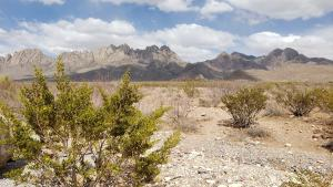 Organ Mountains from the other side