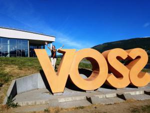 Liza likes Voss