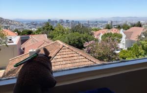 View from Villa Zeezicht, Cape Town