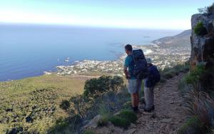 Table Mountain (Camps Bay Pipe Track) hike