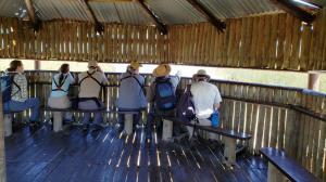 Rondevlei Bird Sanctuary, False Bay