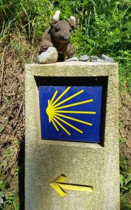 Shells point the way on the Camino