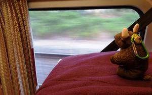 Night train to Lisbon!
