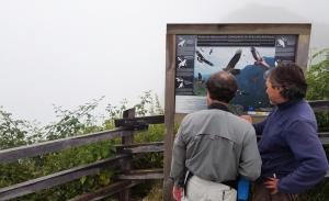 Covadonga Lakes, overlook to feeding station for vultures...no joy
