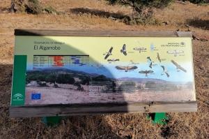 El Algorrobo observation site, Strait of Gibraltar