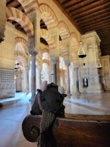In the Mezquita-Catedral de Córdoba