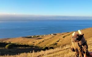 On the Strait of Gibraltar!