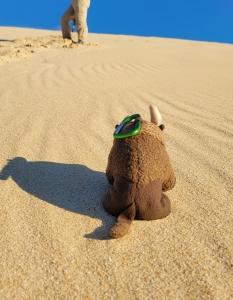 Climbing the sand dunes