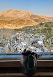 Birding from a hide, Serrania de Ronda