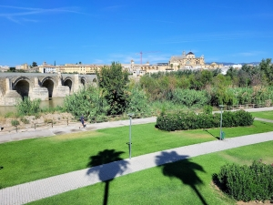 View of Córdoba from across the bridge