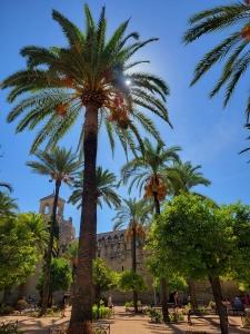 Garden at the Alcázar de los Reyes Cristianos, Córdoba