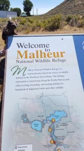 Malheur NWR, OR