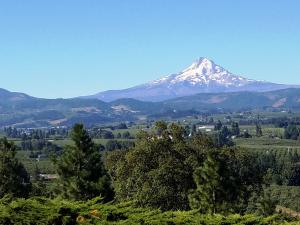 Mt Hood - visible for miles!
