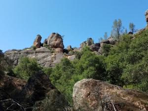 Pinnacles NP, CA